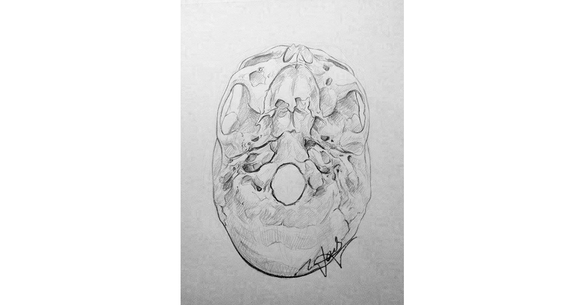 Wendy Gu Visualizations Medical And Scientific Illustration And